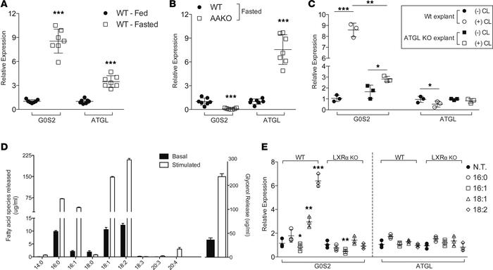 Hepatic G0S2 expression occurs in response to adipose-derived fatty acid...
