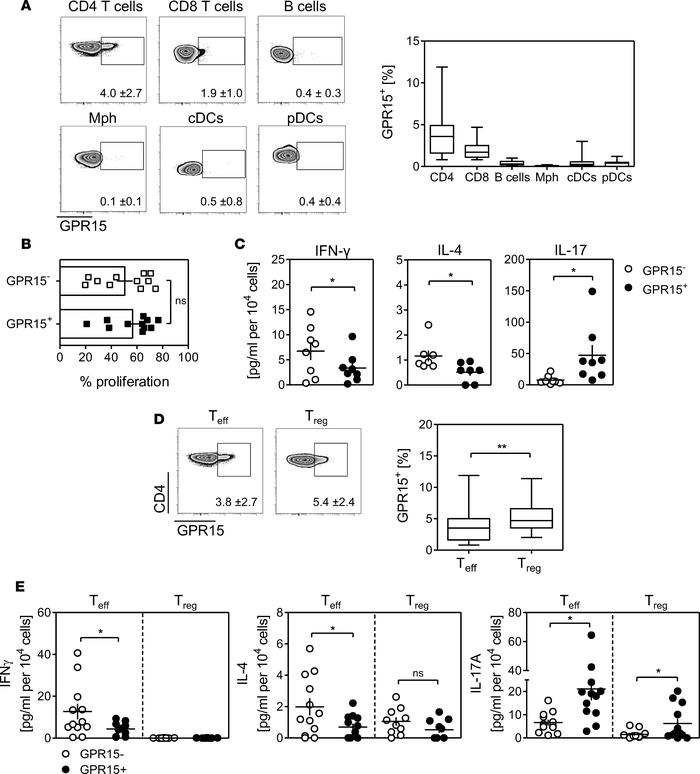 GPR15 is mainly expressed on CD4+ T cells in healthy PBMCs. (A and D) PB...