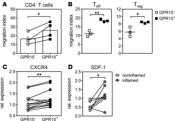 GPR15-expressing cells show higher migration capacity in vitro. (A and B...