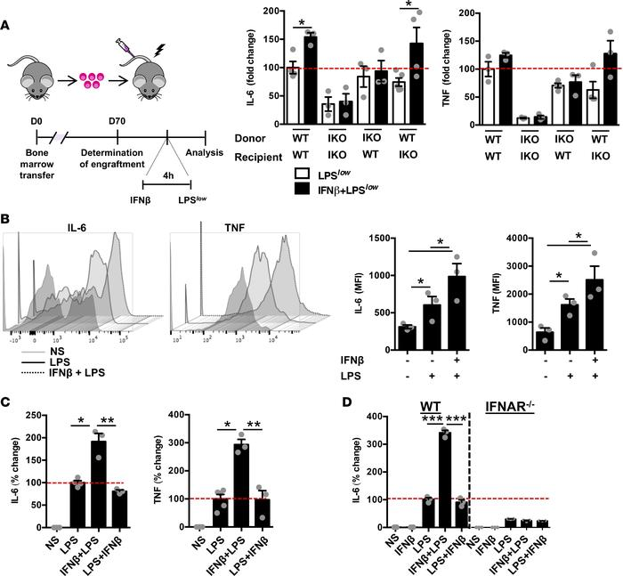 Type I IFN signaling in hematopoietic cells is sufficient for secondary ...