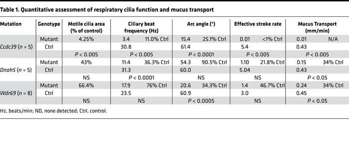 Quantitative assessment of respiratory cilia function and mucus transport