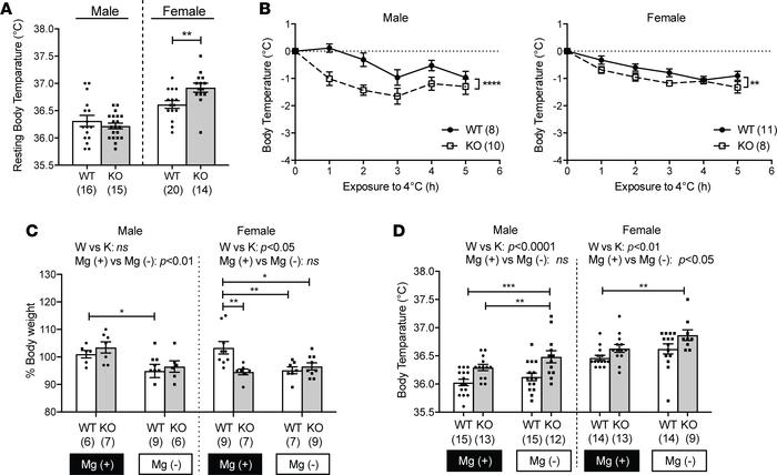 PRL2 deficiency sex-dependently altered thermogenesis. (A) Resting body ...