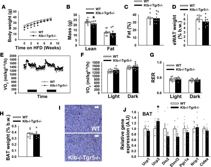 Concomitant genetic deletion of Tgr5 abrogates resistance to high-fat di...