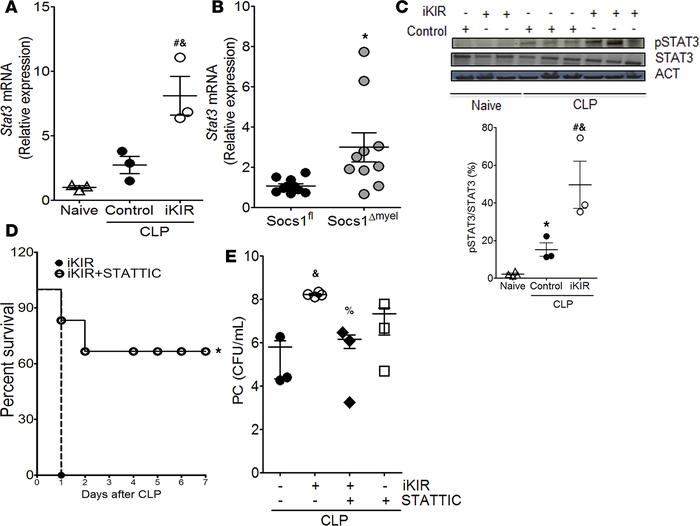 SOCS1 mediates protective effects during sepsis via blockage of STAT3 ac...