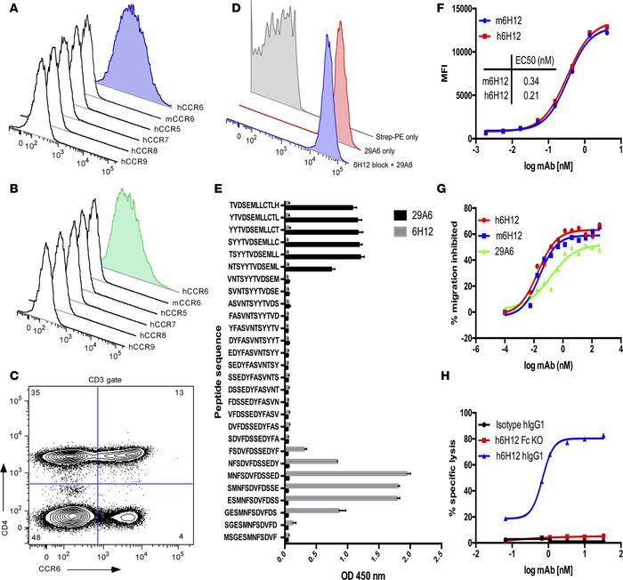 Characterization and engineering of anti-CCR6 mAb. mAbs 6H12 (A) and 29A...