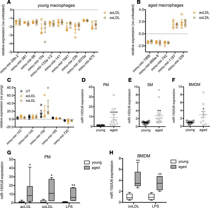 microRNA-150 is upregulated in aged macrophages of diverse origins. (A) ...