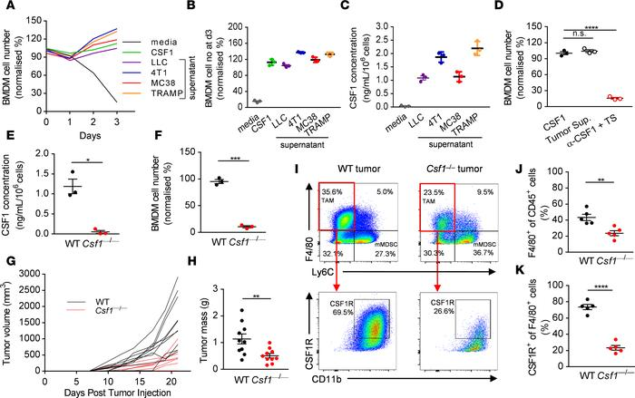 Tumor cell–derived CSF1 promotes tumor growth and recruits CSF1R+ tumor-...