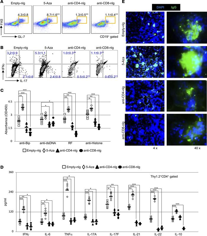 nlg-5-Aza targeted to CD4+ or CD8+ cells suppresses systemic autoimmunit...