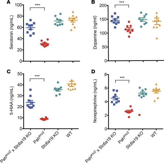 JCI Insight - Inhibiting neutral amino acid transport for