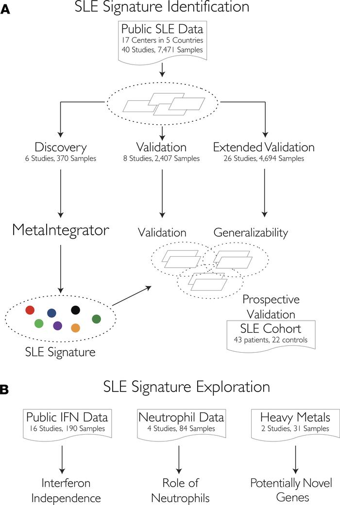 Identification and validation of a SLE-specific gene signature using int...