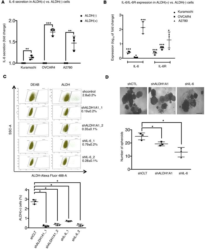 Upregulation of the IL-6 signaling pathway in ALDH+ ovarian cancer stem ...