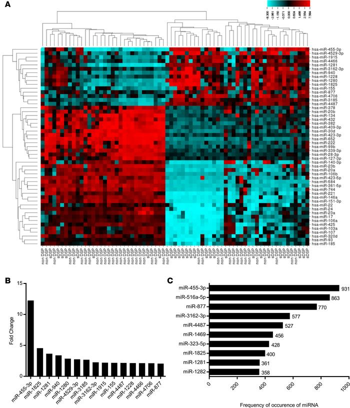 Differentially expressed miRNAs in the Discovery Cohort. Analysis of upr...