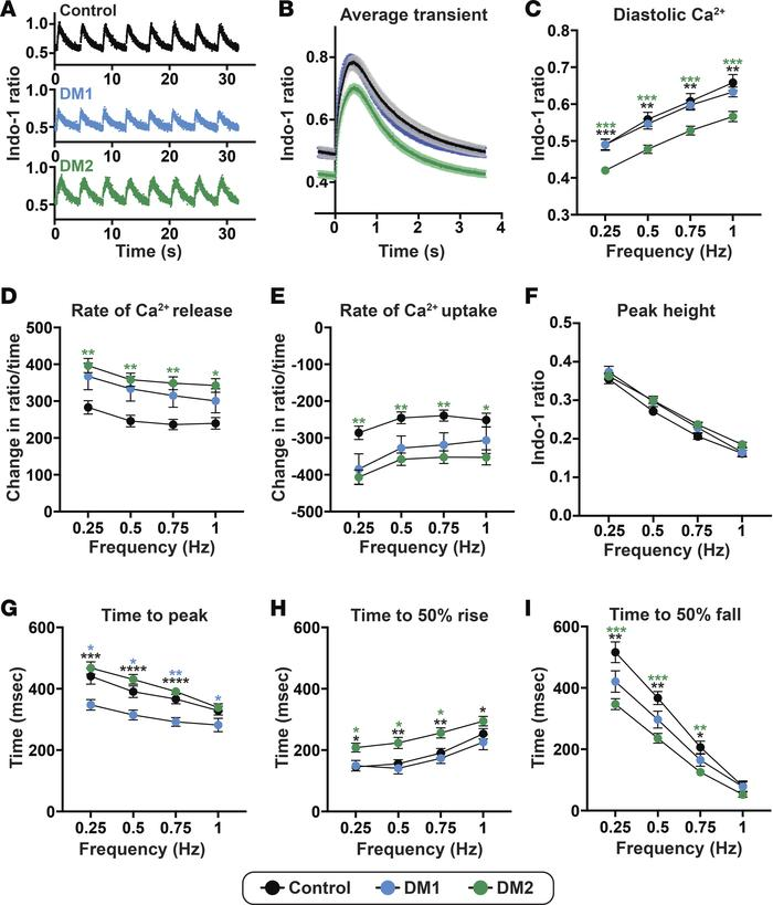 Aberrant but distinct calcium transient patterns in DM1- and DM2 iPSC–de...