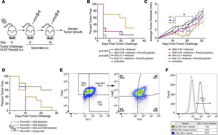 Tumor-specific peptides in combination with ADU-V16 and AddaVax result i...
