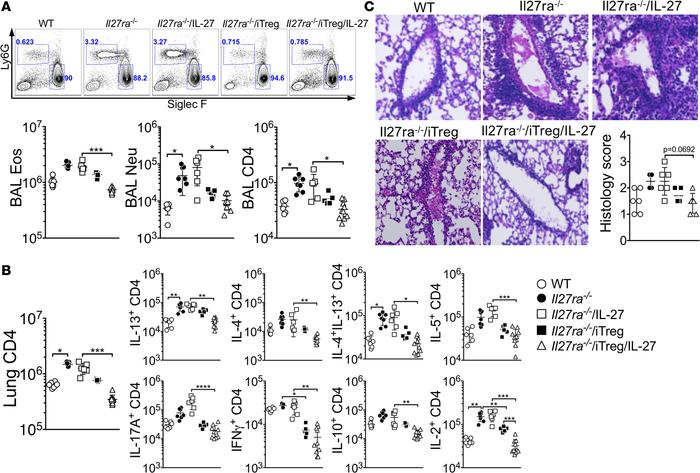 Transfer of WT Tregs into Il27ra–/– mice diminishes allergic airway infl...