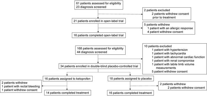 Overview of patient flow and disposition in the open-label and placebo-c...