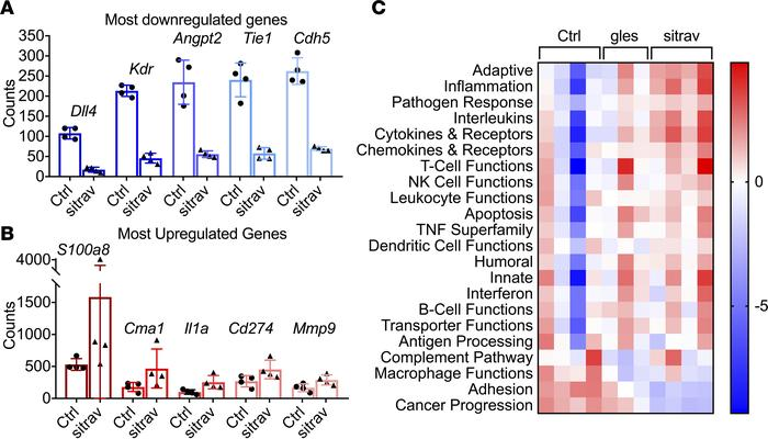 Transcriptome analysis of the immune landscape of KLN205 tumors treated ...