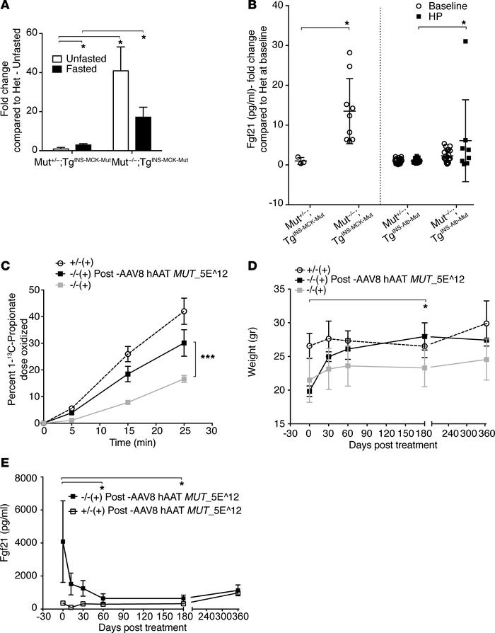 Fgf21 dysregulation in Mut–/–;TgINS-MCK-Mut mice. Hepatic Mut correction...