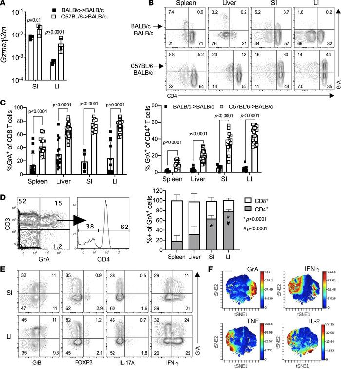 GrA+ Th cells are a hallmark of intestinal GVHD and represent a distinct...