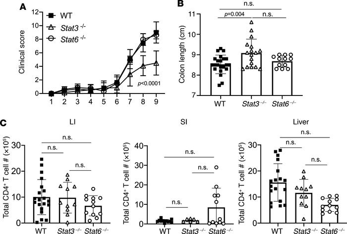 STAT3- and STAT6-deficient Th cells differentially drive aGVHD. Lethally...