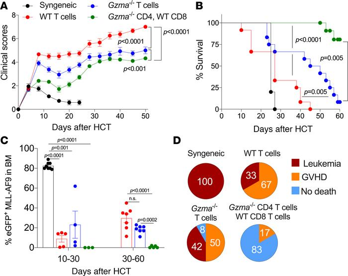 Th cell–derived GrA is not required for the beneficial GVL effect of HCT...