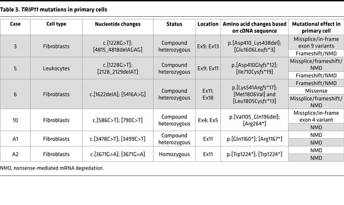 TRIP11 mutations in primary cells