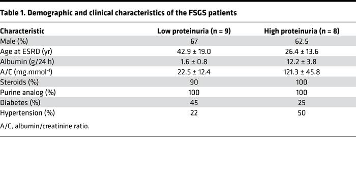 Demographic and clinical characteristics of the FSGS patients