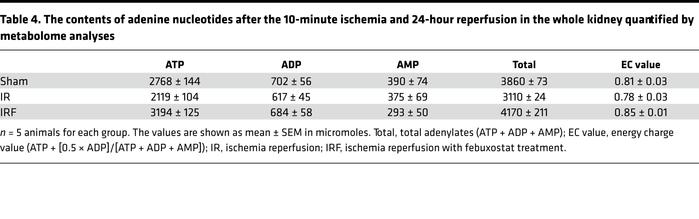 The contents of adenine nucleotides after the 10-minute ischemia and 24-...