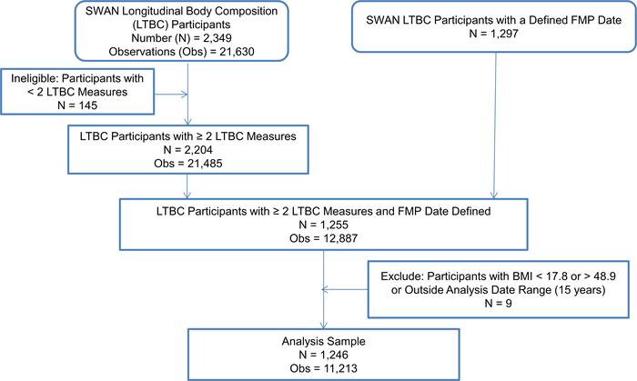 Derivation of the analysis sample for analysis of body composition and w...
