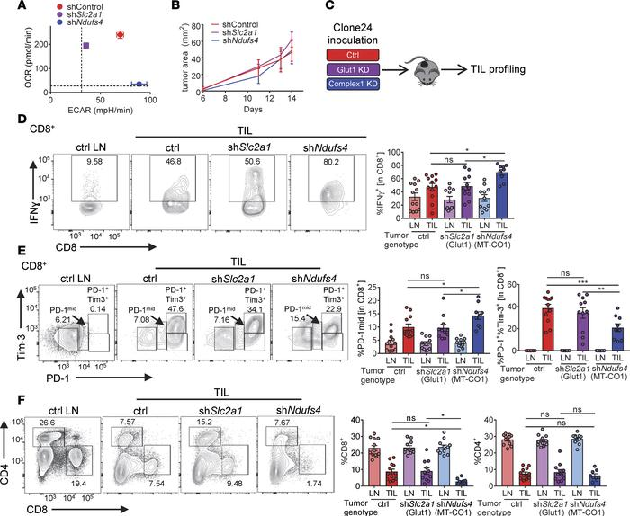 Oxidative metabolism in tumor cells promotes increased T cell dysfunctio...