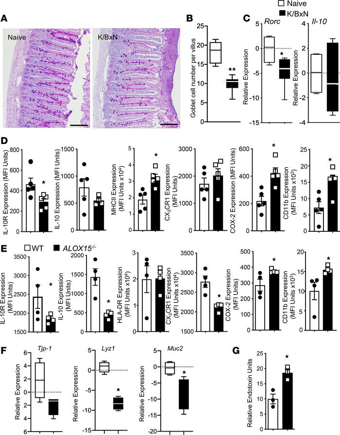 Inflammatory arthritis alters the expression of intestinal epithelial ba...