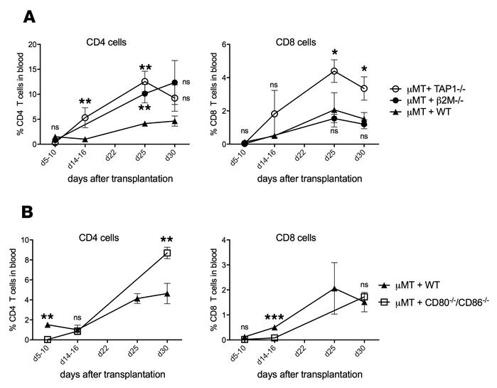 CD8+ T cell recovery does not require expression of MHC class I or CD80/...