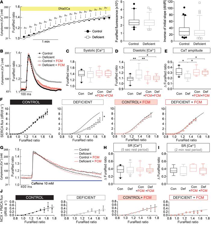 Remodeling of myocyte Ca2+ handling. (A) Protocol for measuring cytoplas...