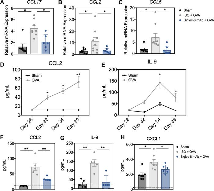 Mice treated with anti–Siglec-8 mAb display reduced expression of OVA-in...