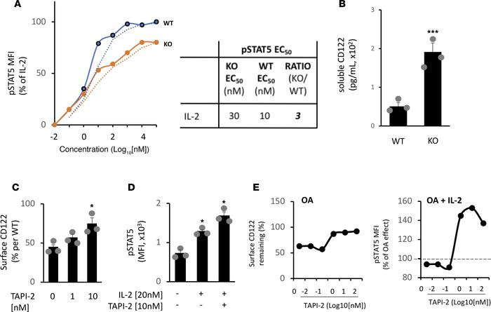 PP2A promotes IL-2 signaling in spleen-derived CD4+ Tregs by repressing ...