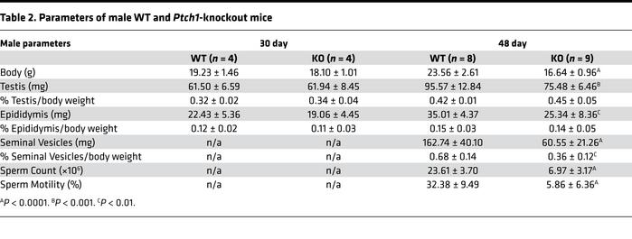 Parameters of male WT and Ptch1-knockout mice