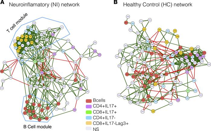 Coregulatory network of immune subsets in neuroinflammatory epileptic di...