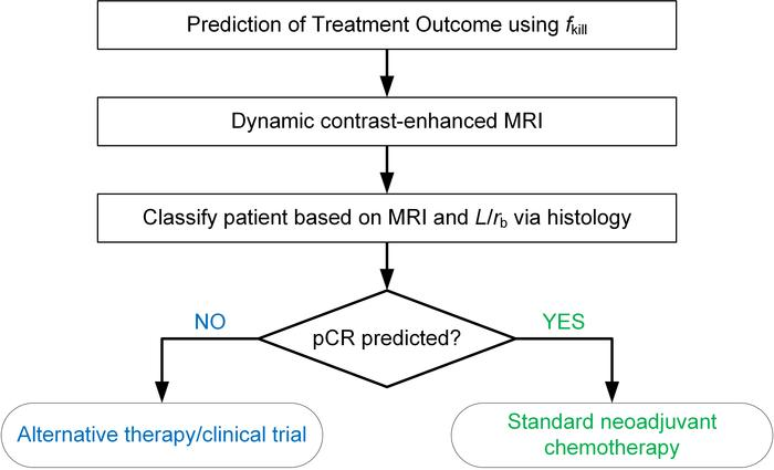 Prediction of treatment outcome using both MRI and tumor histology from ...