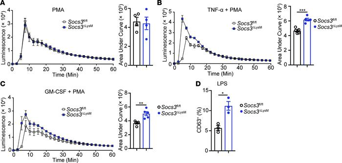 Socs3-deficient neutrophils are functionally hyperactivated in vitro up...