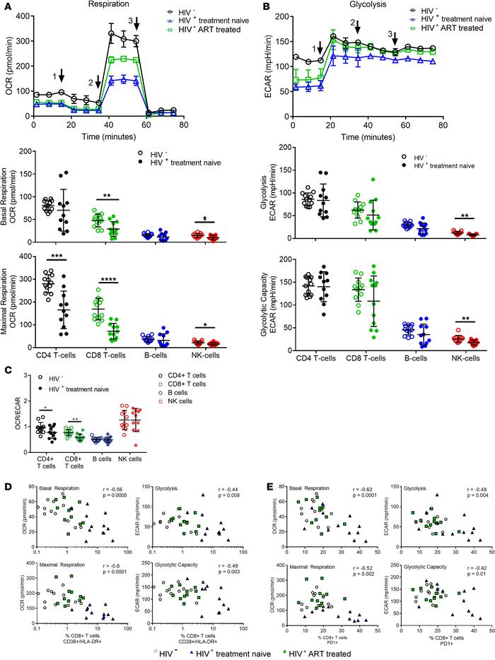 CD4+ and CD8+ T cells and NK cells from HIV-positive, treatment-naive pa...