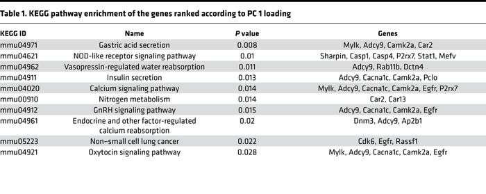 KEGG pathway enrichment of the genes ranked according to PC 1 loading