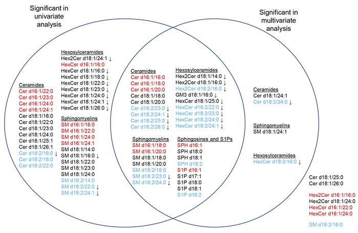 Venn diagram depicting SP species that significantly correlate with HOMA...