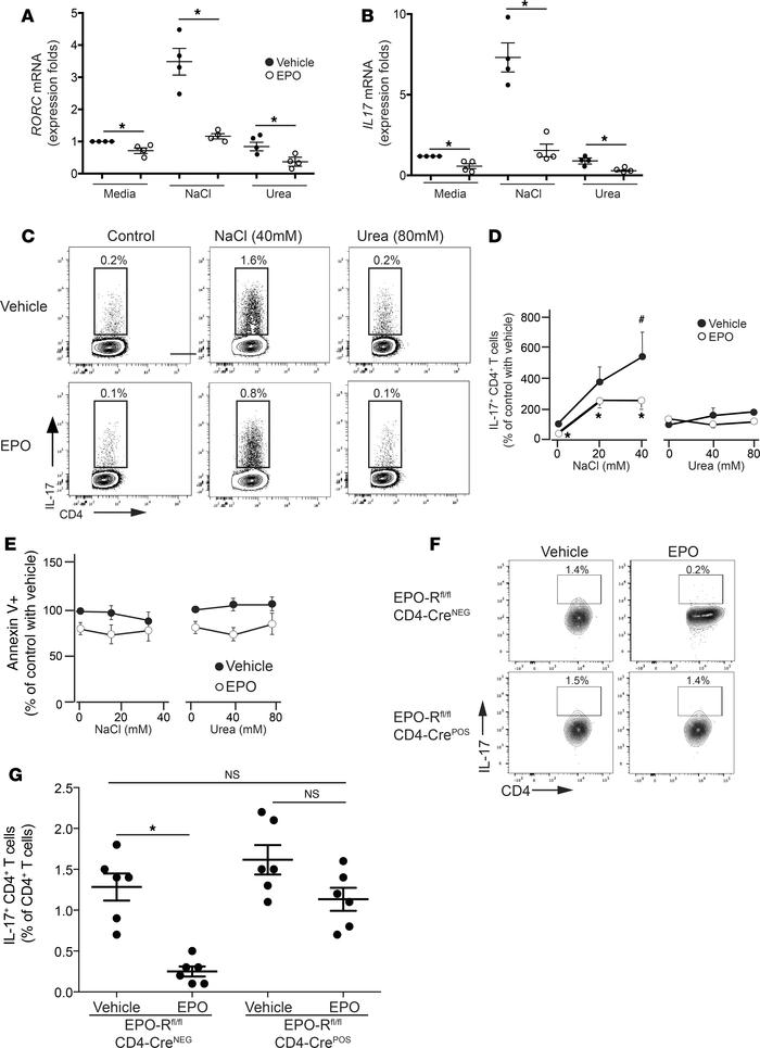 EPO inhibits Th17 cell induction in vitro. Enriched human naive CD4+ T c...