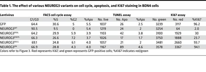 The effect of various NEUROG3 variants on cell cycle, apoptosis, and Ki6...
