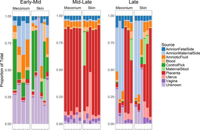 Predicted sources of the murine fetal microbiota. Bacterial source track...