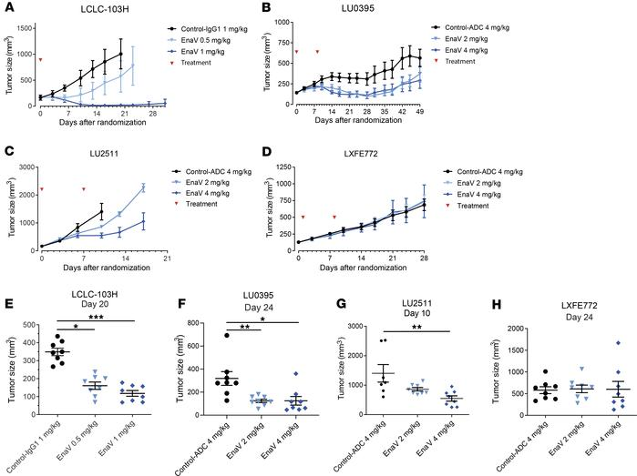 Dose-dependent tumor growth regression or inhibition induced by enapotam...