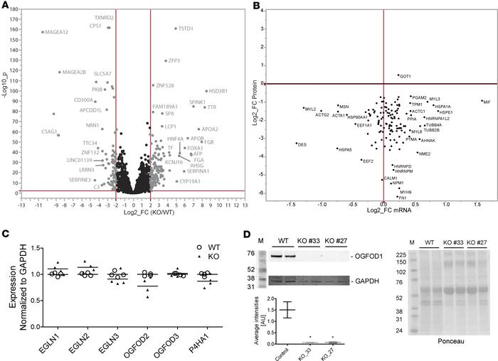 Comparison of the cardiac transcriptome obtained by RNA-Seq and protein ...