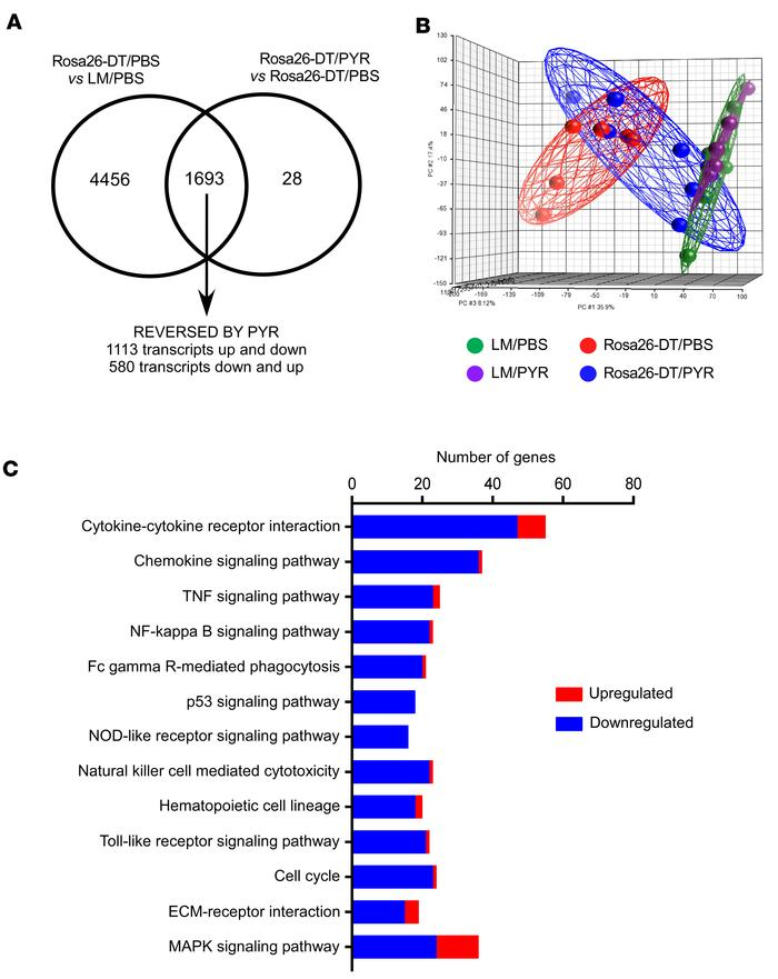 Transcriptional profiling of hearts after diphtheria toxin–mediated inju...
