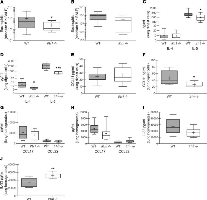 The absence of IL-1R1 and IL-1RA results in varied type 2 responses duri...