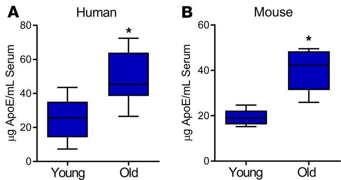 Circulating ApoE levels in humans and in mice increase with age. Serum c...